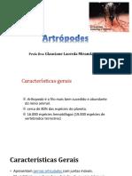 12. Artrópodes