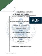 ArtículoCALDERÓN.rusc