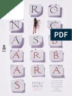 Pedro Simón, «Crónicas bárbaras»