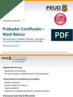 INSTRUCTOR - FEUD -  CTFL_2010_Spanish_ES_067 (1).pdf
