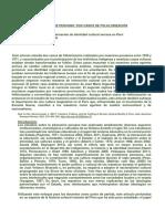 proceso de folklorizacionfolkore e identidad.docx
