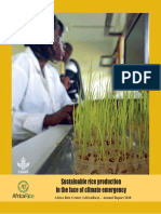 AfricaRice Annual Report 2018 highlights work on sustainable rice production in the face of climate emergency