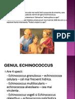 1 Tenia Echinococcus Pp