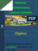 Presentacion_de_Derecho_Internacional_Consuetudinario.ppt