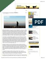 """""""A-montagem-no-cinema-brasileiro""""-por-André-Brasil-Revista-Continente-Multicultural.pdf"""