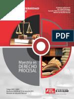 Brochure Derecho Procesal