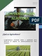 Impacto de La Agricultura