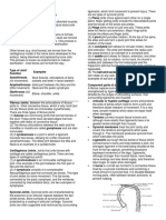 SKELETAL SYSTEM PHYSIOLOGY.pdf