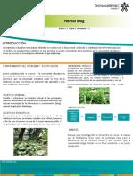 Póster Herbal Blog.