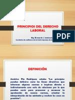 Principio Sy Fuentes 999