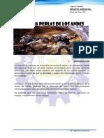 350335599-Diques-de-Cola.docx