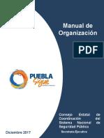 Manual Organizacin 1