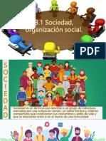 3.1 Sociedad Organizacion Social.