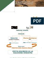 efectos  biologicos 2019.pptx