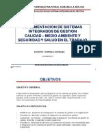 IMPLEMENTACION SIG GG (PRESENTACION).pdf
