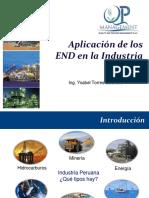 QPM SAC Aplicacion de Los END en La Industria Peruana