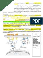 articulo de bioca.docx