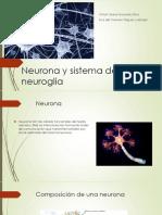 Neurona y sistema de la neuroglia