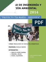 249608012-Proyecto-Tia-Maria.docx