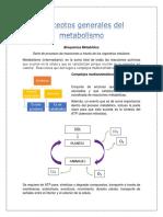 Resumen unidad I y II_ Metabólica.docx