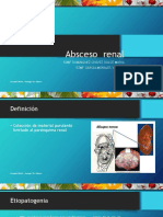 Absceso Renal