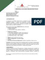Afecções do sistema locomotor de bovinos