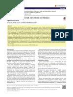 PDF Ijwhr 204
