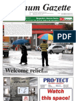 Platinum Gazette 19 November 2010