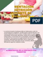 nutricion exposicion