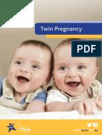 Twins ebook