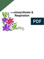 Photosynthesis and Respiration e (2).pptx
