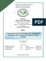 HASSINI-ABD-ELHAKIM.pdf