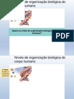 CNT - PROF2_Níveis Estruturais Do Corpo Humano