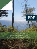 holistic healing centre  thesis book.pdf