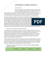 Act_preguntas Generadoras y Matriz Conceptual