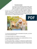 APICOLA.docx
