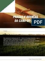 Caderneta-de-Pragas-e-Doenças-da-Cana-de-açúcar-CTC.pdf
