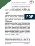 SEMINARIO-final.docx