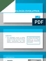 metodologia evolutiva-convertido
