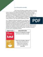 agenda 2030.docx