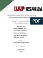 SEMINARIO BASTONES ANDADORES Y MULETAS.pdf