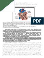 Aula 3 - Cardiopatias