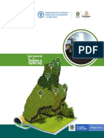 TOLIMA TOMO II.pdf