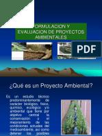 FORMULACION Y  EVALUACION DE PROYECTOS AMBIENTALES