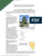 Arboles Singulares La Palma