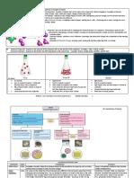 Chem [1].pdf