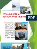Pesca Industrial- Clase Legis