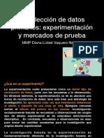 Recolección de Datos Primarios Experimentación y Mercado de Prueba