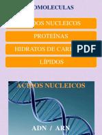 Parte i Acidos Nucleicos