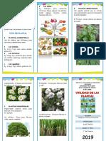 Triptico-Utilidad-de-Las-Plantas.docx